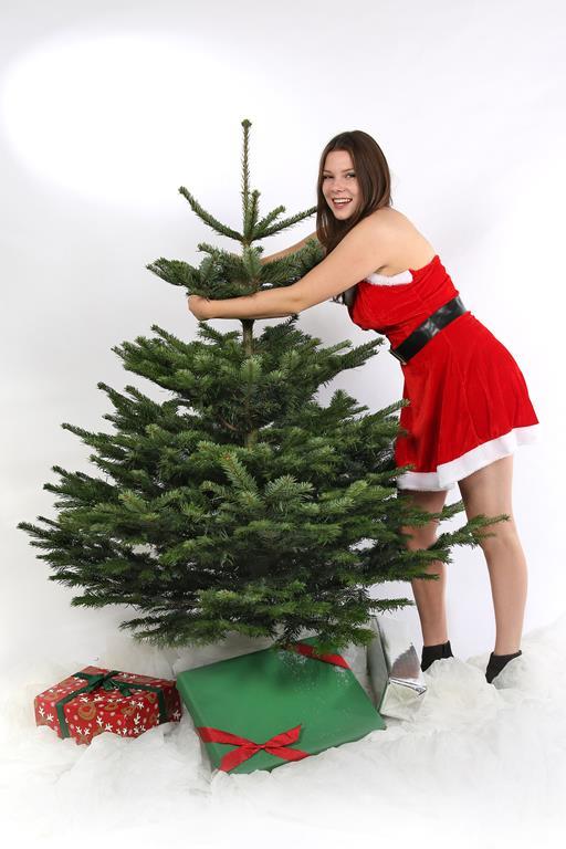 Weihnachtsbaum, Nordmanntanne 165-180cm online kaufen