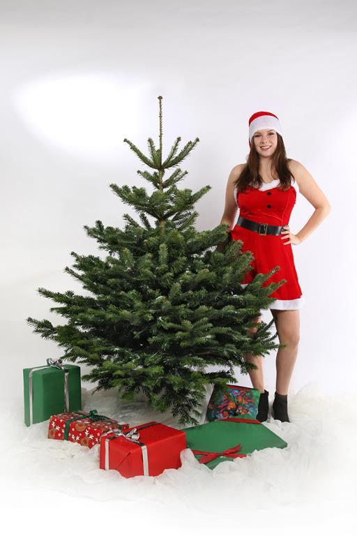 Weihnachtsbaum, Nordmanntanne 185-210cm online kaufen
